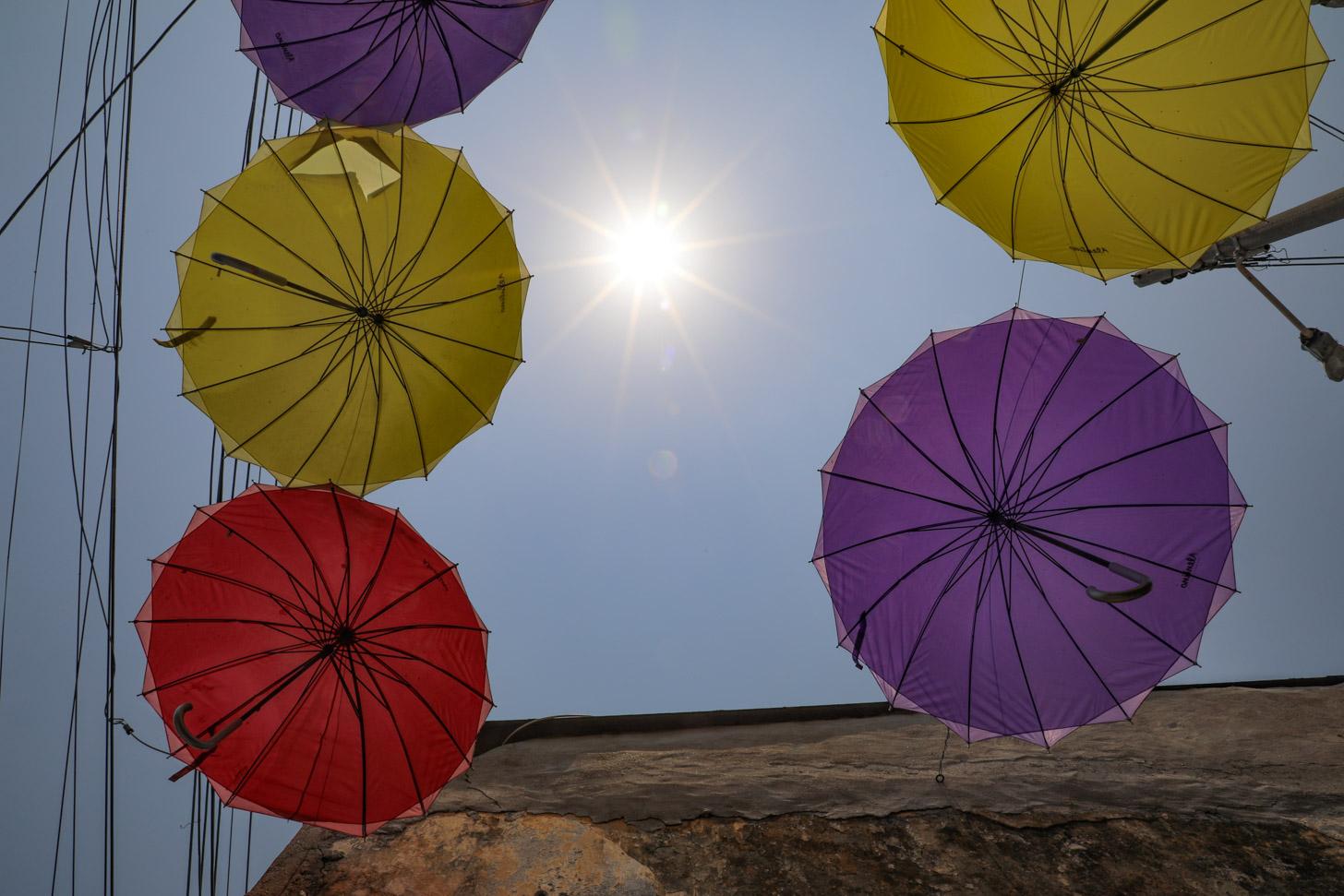 paraplu's tegen de regen